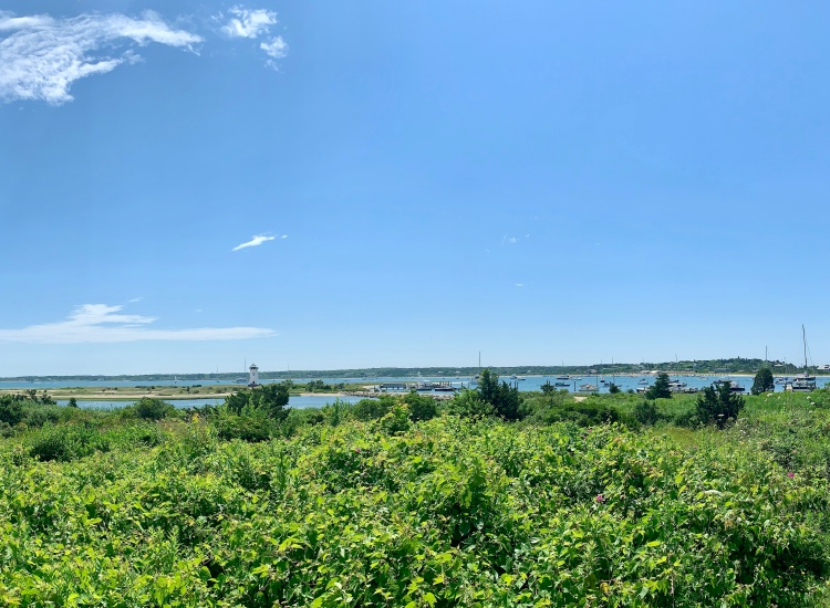 View of the Edgartown Lighthouse